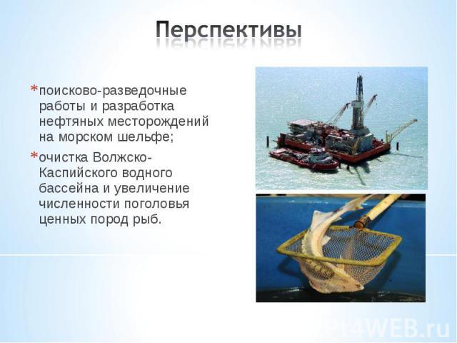 поисково-разведочные работы и разработка нефтяных месторождений на морском шельфе; поисково-разведочные работы и разработка нефтяных месторождений на морском шельфе; очистка Волжско-Каспийского водного бассейна и увеличение численности поголовья цен…