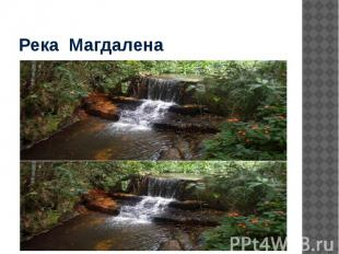 Река Магдалена
