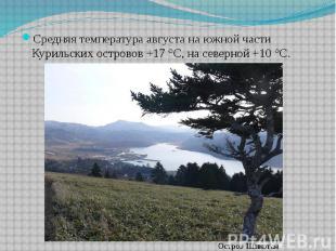 Средняя температура августа на южной части Курильских островов +17 °C, на северн