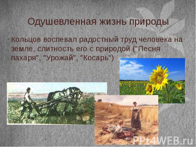 """Одушевленная жизнь природы Кольцов воспевал радостный труд человека на земле, слитность его с природой (""""Песня пахаря"""", """"Урожай"""", """"Косарь"""")"""