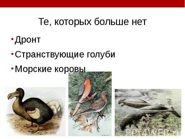 Те, которых больше нет Дронт Странствующие голуби Морские коровы