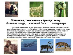 Массовое вымирание видов происходит и в наши дни. По разным оценкам каждый день