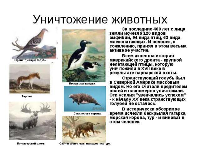За последние 400 лет с лица земли исчезло 120 видов амфибий, 94 вида птиц, 63 вида млекопитающих. И человек, к сожалению, принял в этом весьма активное участие. За последние 400 лет с лица земли исчезло 120 видов амфибий, 94 вида птиц, 63 вида млеко…