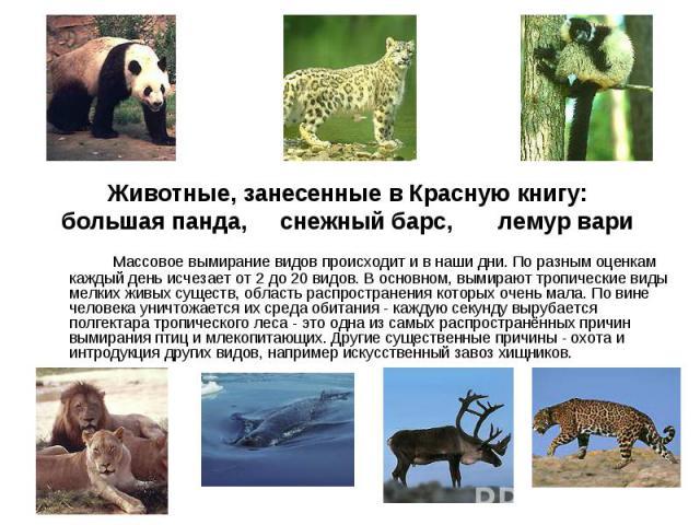 Массовое вымирание видов происходит и в наши дни. По разным оценкам каждый день исчезает от 2 до 20 видов. В основном, вымирают тропические виды мелких живых существ, область распространения которых очень мала. По вине человека уничтожается их среда…