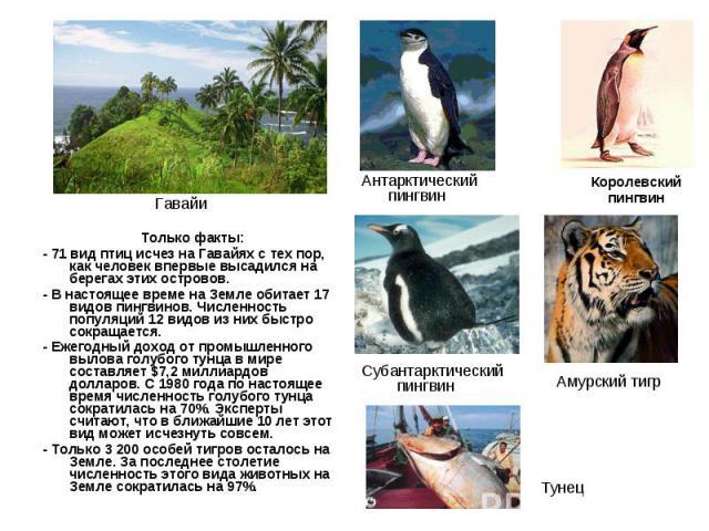 Только факты: Только факты: - 71 вид птиц исчез на Гавайях с тех пор, как человек впервые высадился на берегах этих островов. - В настоящее време на Земле обитает 17 видов пингвинов. Численность популяций 12 видов из них быстро сокращается. - Ежегод…