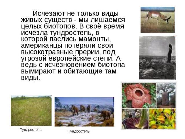Исчезают не только виды живых существ - мы лишаемся целых биотопов. В своё время исчезла тундростепь, в которой паслись мамонты, американцы потеряли свои высокотравные прерии, под угрозой европейские степи. А ведь с исчезновением биотопа вымирают и …