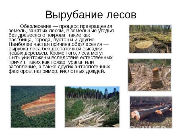 Обезлесение — процесс превращения земель, занятых лесом, в земельные угодья без древесного покрова, такие как пастбища, города, пустоши и другие. Наиболее частая причина обезлесения — вырубка леса без достаточной высадки новых деревьев. Кроме того, …