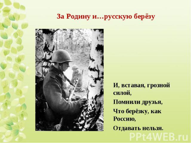 И, вставая, грозной силой, И, вставая, грозной силой, Помнили друзья, Что берёзку, как Россию, Отдавать нельзя.