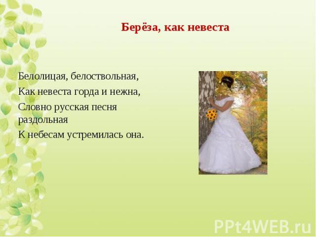 Белолицая, белоствольная, Белолицая, белоствольная, Как невеста горда и нежна, Словно русская песня раздольная К небесам устремилась она.