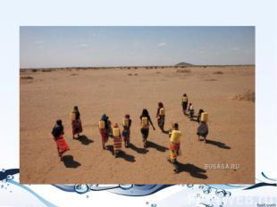 Женщины Габра в северной Кении тратят по пять часов в день, чтобы принести грязн