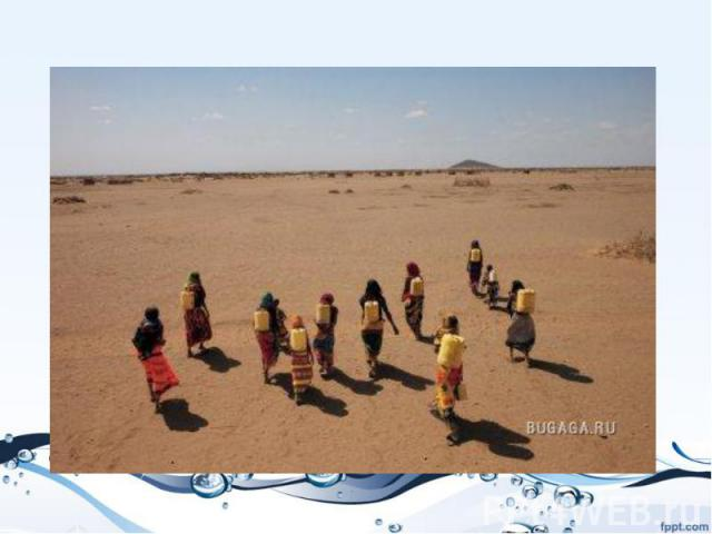 """Женщины Габра в северной Кении тратят по пять часов в день, чтобы принести грязную воду из водоема. Затянувшаяся засуха повергла этот и без того неблагоприятный регион в настоящий """"водный кризис""""."""