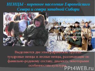 НЕНЦЫ - коренное население Европейского Севера и севера западной Сибири