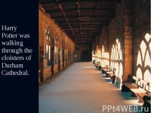 Harry Potter was walking through the cloisters of Durham Cathedral. Harry Potter
