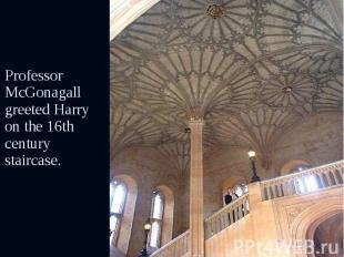 Professor McGonagall greeted Harry on the 16th century staircase. Professor McGo