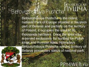 Belovezhskaya Pushcha Belovezhskaya Pushcha is the oldest national Park of Europ