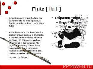 Flute [ ] A musician who plays the flute can be referred to as a flute player, a