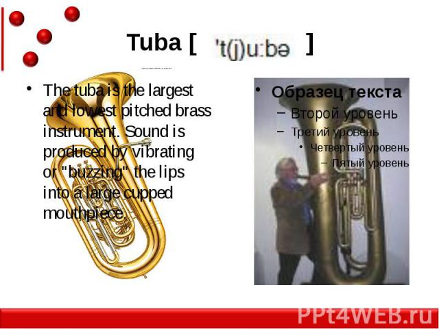 """Tuba [ ] The tuba is the largest and lowest pitched brass instrument. Sound is produced by vibrating or """"buzzing"""" the lips into a large cupped mouthpiece."""
