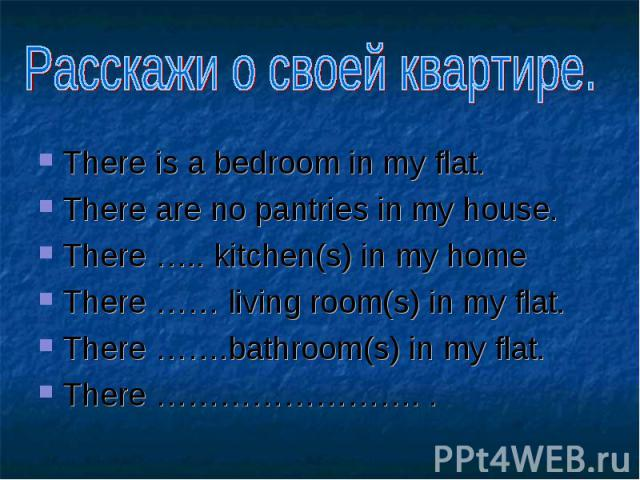 There is a bedroom in my flat. There is a bedroom in my flat. There are no pantries in my house. There ….. kitchen(s) in my home There …… living room(s) in my flat. There …….bathroom(s) in my flat. There ……………………. .