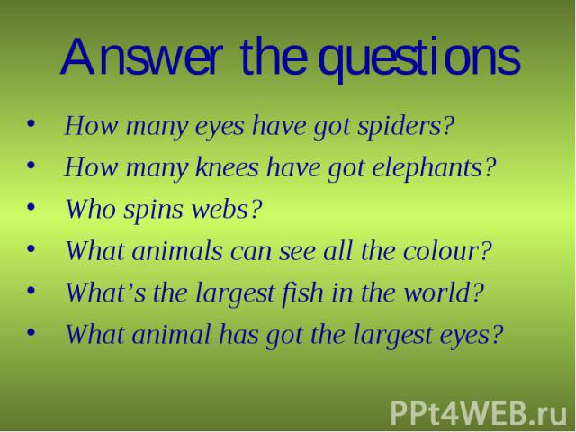 How many eyes have got spiders? How many eyes have got spiders? How many knees have got elephants? Who spins webs? What animals can see all the colour? What's the largest fish in the world? What animal has got the largest eyes?