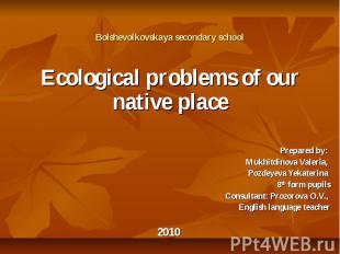 Bolshevolkovskaya secondary school Ecological problems of our native place Prepa