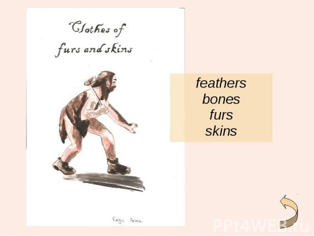 feathers feathers bones furs skins