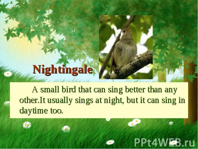 A small bird that can sing better than any other.It usually sings at night, but it can sing in daytime too. A small bird that can sing better than any other.It usually sings at night, but it can sing in daytime too.