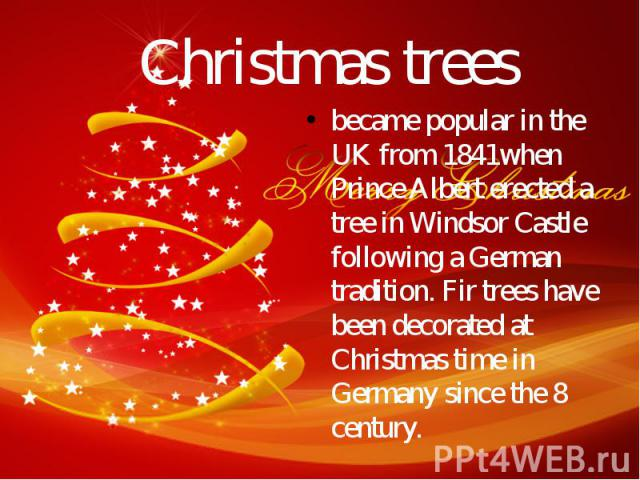 Christmas trees became popular in the UK from 1841when Prince Albert erected a tree in Windsor Castle following a German tradition. Fir trees have been decorated at Christmas time in Germany since the 8 century.