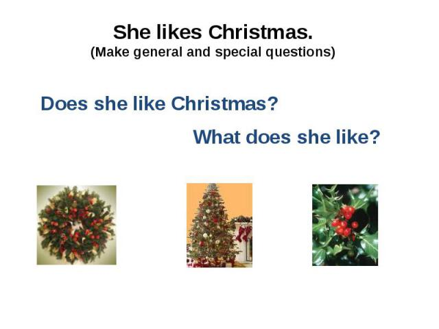 She likes Christmas. (Make general and special questions)