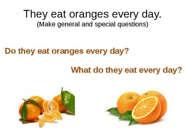 They eat oranges every day. (Make general and special questions)