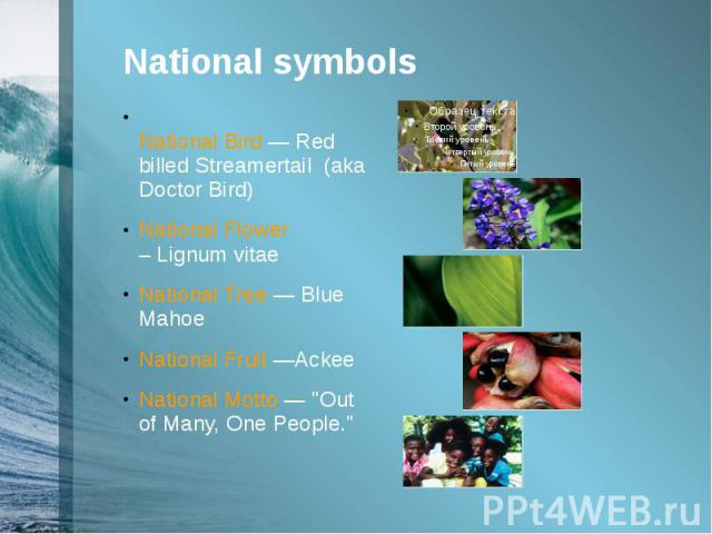 """National symbols National Bird —Red billed Streamertail (aka Doctor Bird) National Flower –Lignum vitae National Tree —Blue Mahoe National Fruit —Ackee National Motto — """"Out of Many, One People."""""""