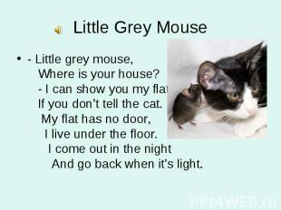 - Little grey mouse, Where is your house? - I can show you my flat If you don't