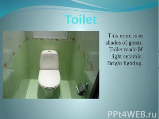 Toilet This room is in shades of green. Toilet made of light ceramic. Bright lig