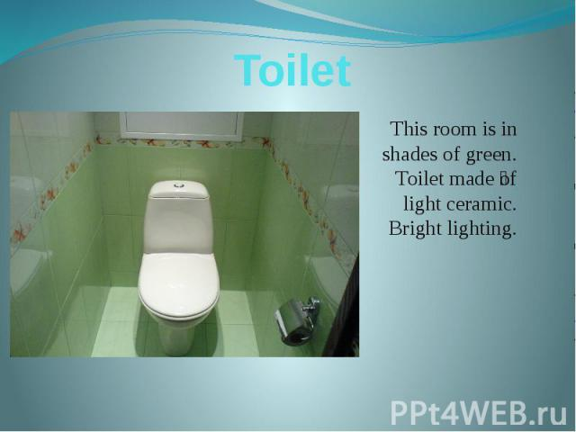 Toilet This room is in shades of green. Toilet made of light ceramic. Bright lighting.