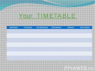 Your TIMETABLE