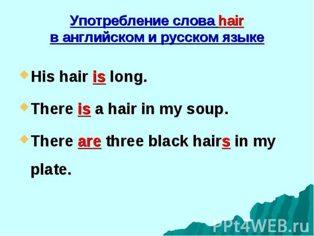 His hair is long. His hair is long. There is a hair in my soup. There are three black hairs in my plate.