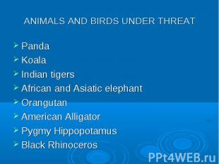 Panda Panda Koala Indian tigers African and Asiatic elephant Orangutan American