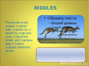 This animal is very unusual. It cannot walk, it cannot run, it cannot fly, it ca