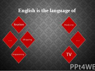 English is the language of