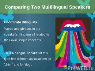 Coordinate Bilinguals Coordinate Bilinguals Words and phrases in the speaker's m