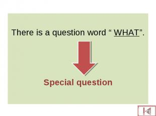 """There is a question word """" WHAT"""". Special question"""