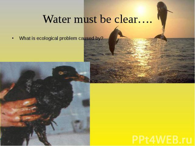 Water must be clear…. What is ecological problem caused by?