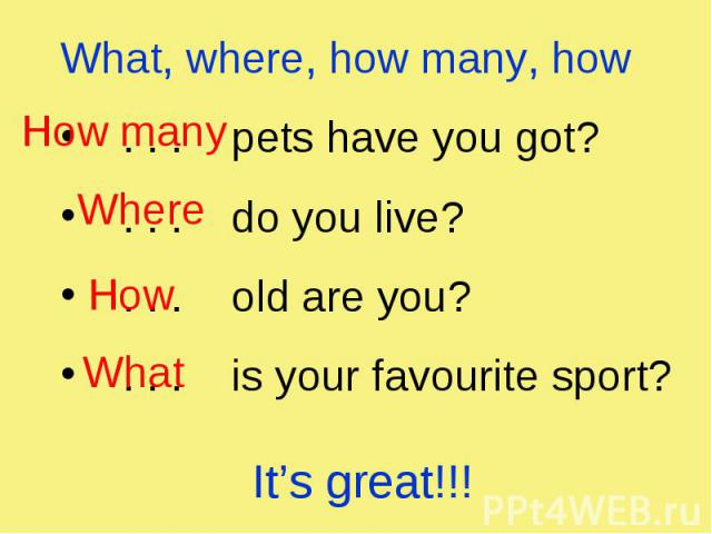 What, where, how many, how What, where, how many, how . . . pets have you got? . . . do you live? . . . old are you? . . . is your favourite sport?