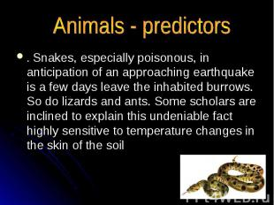 . Snakes, especially poisonous, in anticipation of an approaching earthquake is