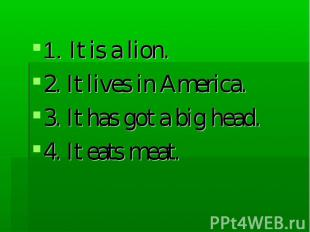 1. It is a lion. 2. It lives in America. 3. It has got a big head. 4. It eats me