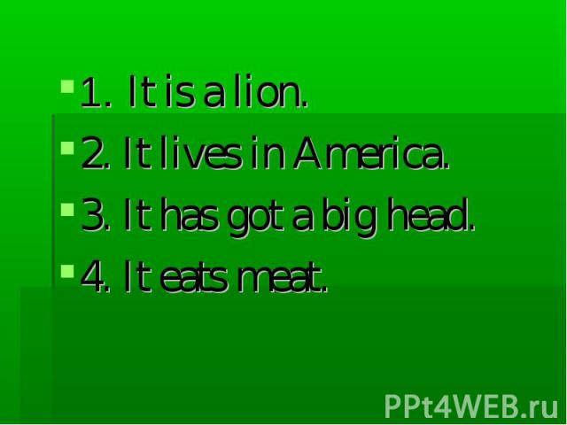 1. It is a lion. 2. It lives in America. 3. It has got a big head. 4. It eats meat.