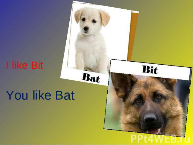 I like Bit I like Bit You like Bat