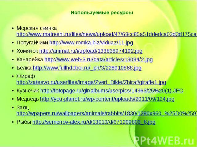 Используемые ресурсы Морская свинка http://www.matreshi.ru/files/news/upload/47/68cc85a51ddedca03d3d175cae4155b3.jpg Попугайчики http://www.romka.biz/viduaz/11.jpg Хомячок http://animal.ru/i/upload/133838974192.jpg Канарейка http://www.web-3.ru/data…