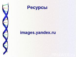 Ресурсы images.yandex.ru