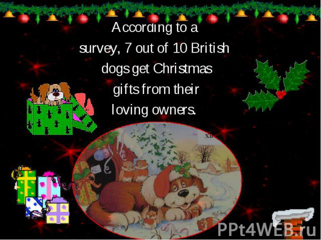 According to a According to a survey, 7 out of 10 British dogs get Christmas gifts from their loving owners.