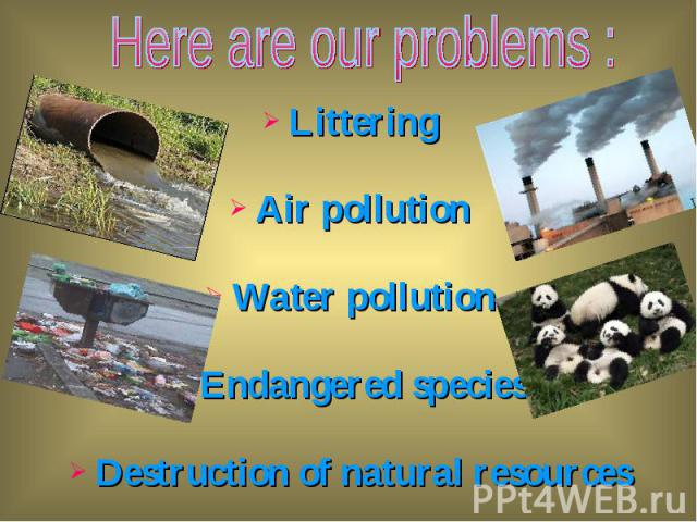 Littering Littering Air pollution Water pollution Endangered species Destruction of natural resources